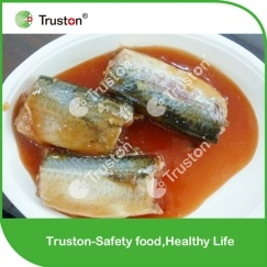 Canned Mackerel in Oil for Sale