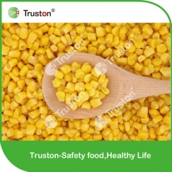 Cheap Hot saling New Crop Sweet Corn
